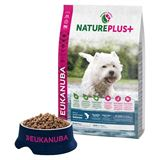 Immagine di Eukanuba Nature Plus Adult Small con Salmone